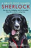 Sherlock: The Fire Brigade Dog