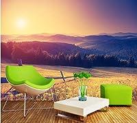 Mbwlkj ファンタジー日没Hd自然風景テレビの背景壁画カスタム3D秋草原リビングルームの装飾壁画-200cmx140cm