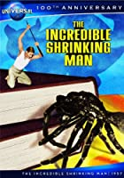 Incredible Shrinking Man [DVD] [Import]
