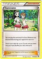 Pokemon - Teammates (141/160) - XY Primal Clash by Pokテゥmon [並行輸入品]