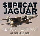 Sepecat Jaguar: Almost Extinct