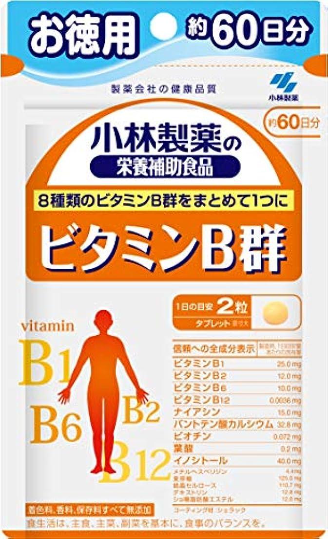 無声で船乗りズームインする小林製薬の栄養補助食品 ビタミンB群 お徳用 約60日分 120粒