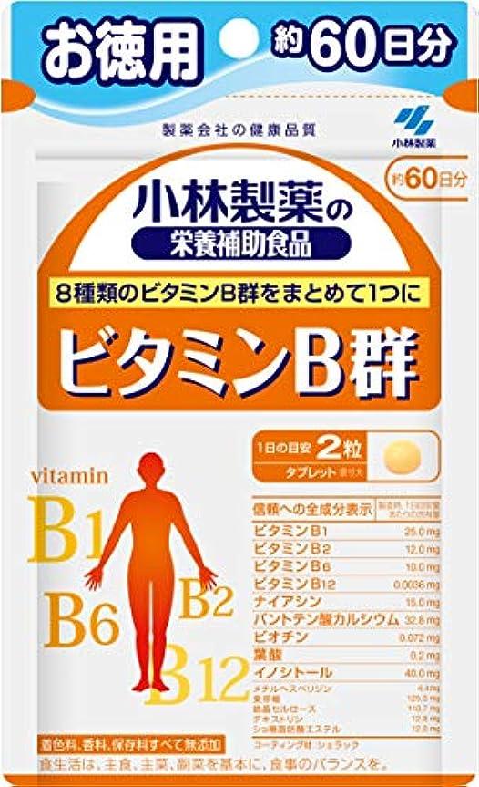 鹿パターンカタログ小林製薬の栄養補助食品 ビタミンB群 お徳用 約60日分 120粒