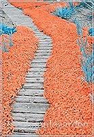 タイムフローレス多年生グランドカバー花のための家の庭に忍び寄る50pcsのロッククレス種子クライミング種子:15