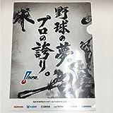 オールスター2017 ナゴヤドーム 配布限定 クリアファイル