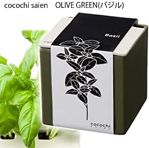 ハイポニカ 心知菜園 cocochi saien Olive Green バジル 水耕栽培キット 家庭菜園 キッチン菜園