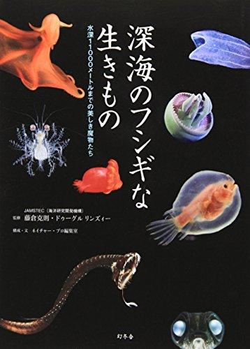 深海のフシギな生きもの ー水深11000メートルまでの美しき魔物たちの詳細を見る