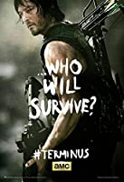 The Walking Dead - Terminus Daryl Poster 24 x 36in by Posterstoponline