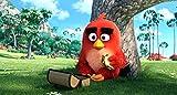 Angry Birds - Der Film - Steelbook