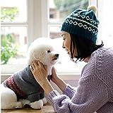 お揃いで作りたい 手編みのわんこ服 画像