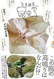 ときめき昆虫学 画像