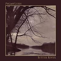 Bitter River [12 inch Analog]