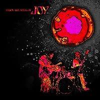 Under the Spell of Joy [12 inch Analog]