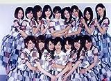 """【日本国外専用発送(国内用は別途出品しています)】Japanese idol """"Nogisaka46"""" Photo"""