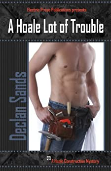 A Hoale Lot of Trouble (Hoale Construction Mysteries Book 1) by [Sands, Declan]