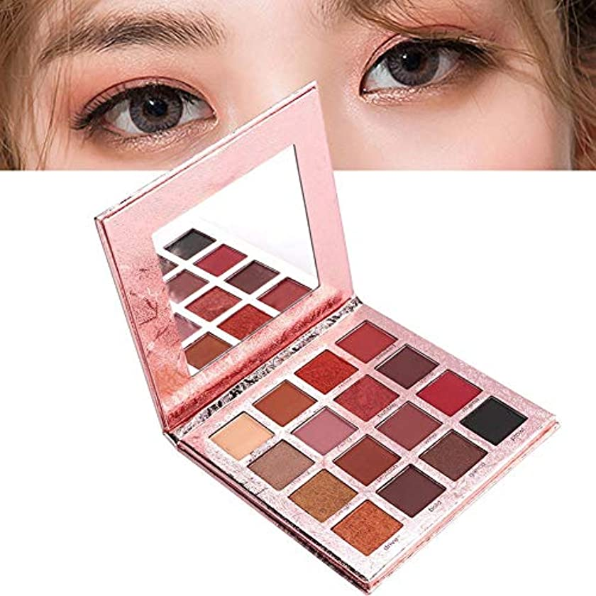聞く事前誇張するアイシャドウパレット 16色 化粧マット 化粧品ツール グロス アイシャドウパウダー