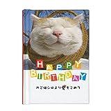 学研ステイフル メッセージカード 誕生日 豆ブック かご猫 B50114