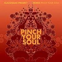 Clazziquai Project 2nd Remix Album - Pinch Your Soul (韓国盤)