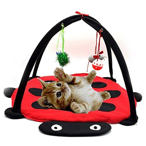 夜明け ファッション ペット アクセサリー ビートル テント ゲーム 寝る 両用 ペットベッド パッド おもちゃ 猫用ファッション ペット アクセサリー ビートル テント ゲーム 寝る 両用 ペットベッド パッド おもちゃ 猫用 (ビートル, 45*45*34cm)