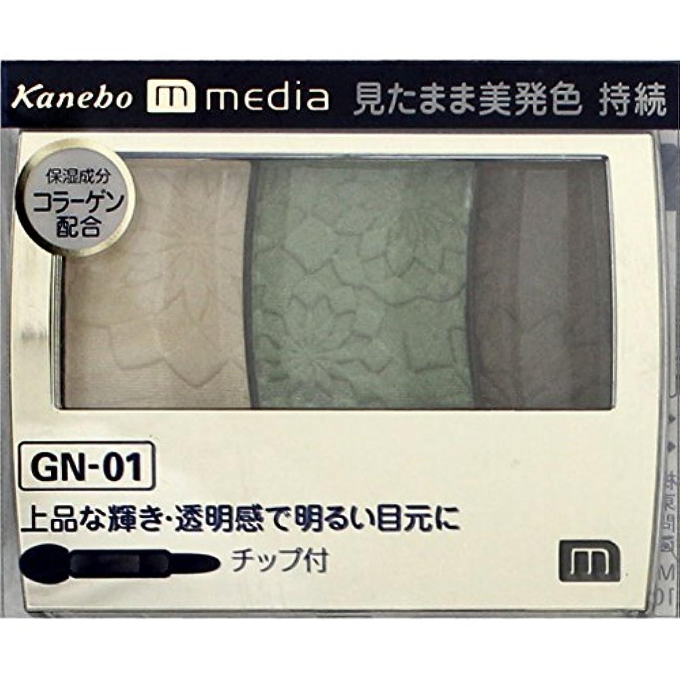 ビルマ彫刻ランク【カネボウ】 メディア グラデカラーアイシャドウ GN-01