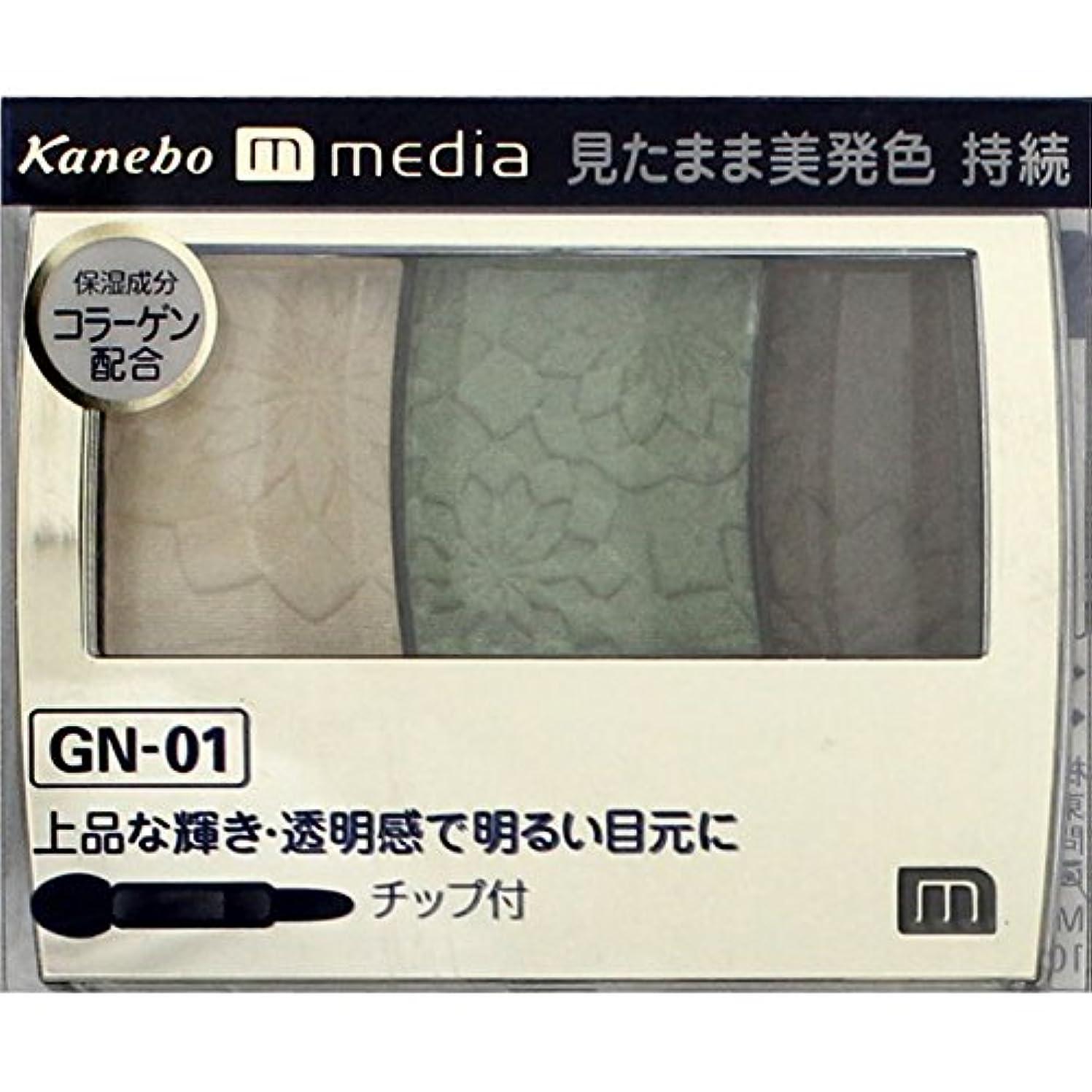 注ぎます乱闘茎【カネボウ】 メディア グラデカラーアイシャドウ GN-01
