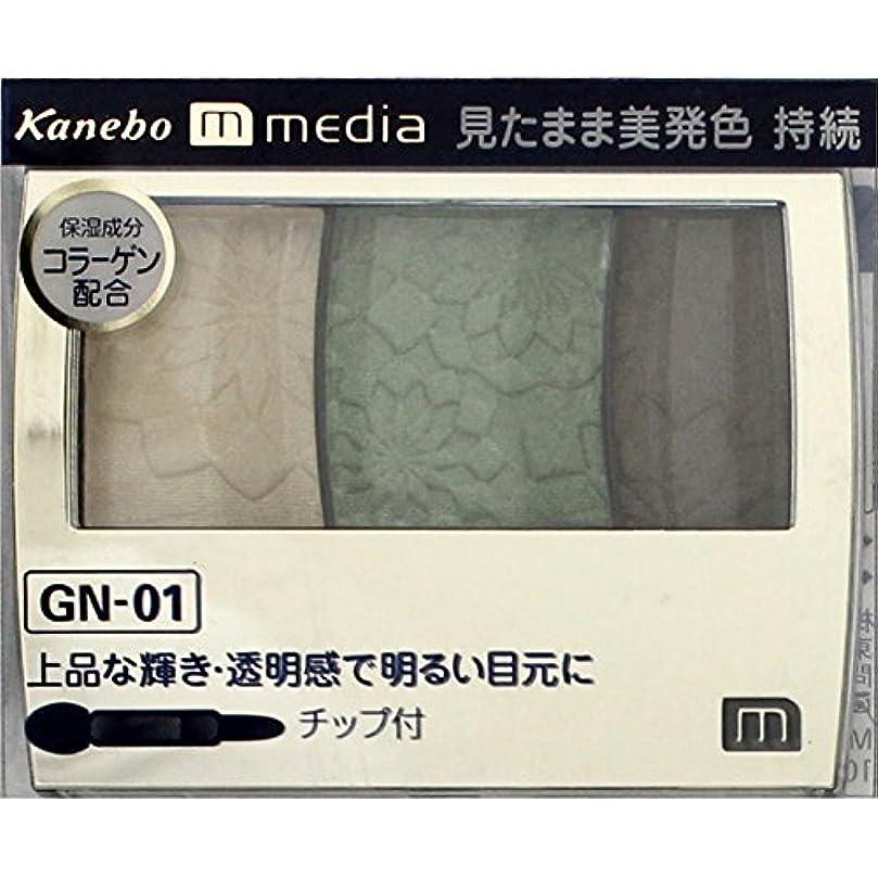 ケント孤児食べる【カネボウ】 メディア グラデカラーアイシャドウ GN-01