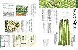 新・野菜の便利帳 健康編 (便利帳シリーズ) 画像