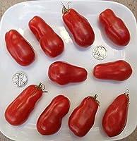 スーパーイタリアの貼り付け - オーガニック家宝トマト種子 - プレミア貼り付け - 40個の種子