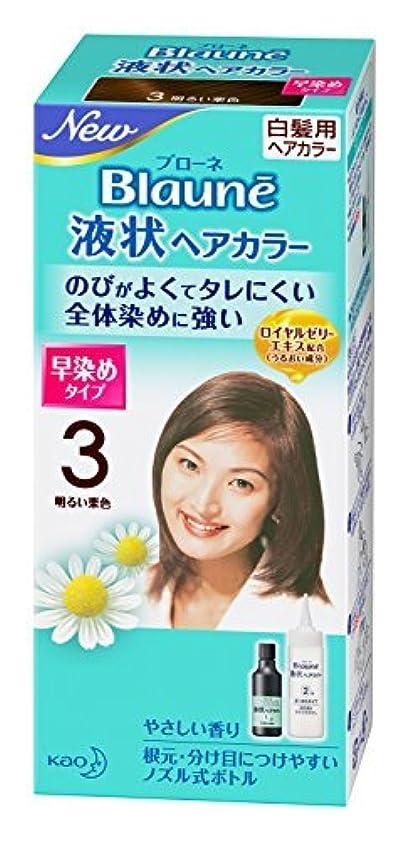 有限パトロン利益【液状タイプ】ブローネ液状ヘアカラー 3 明るい栗色 Japan