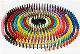 Winning 12色×20個=240個セット 木製 カラー ドミノ 積木 44×20×7mm