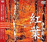紅葉-もみじ- [DVD]