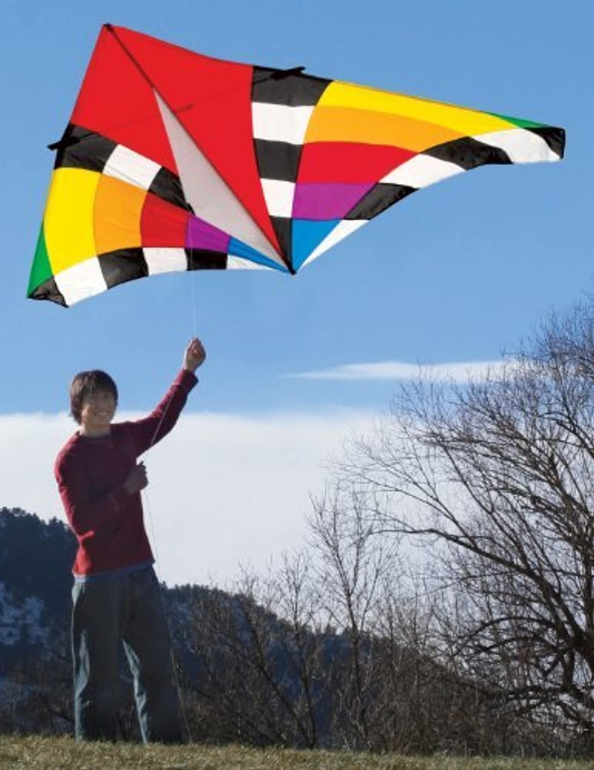 Into The Wind 9-ft. Levitation Rainbow Single Line Delta Kite by Into The Wind [並行輸入品]