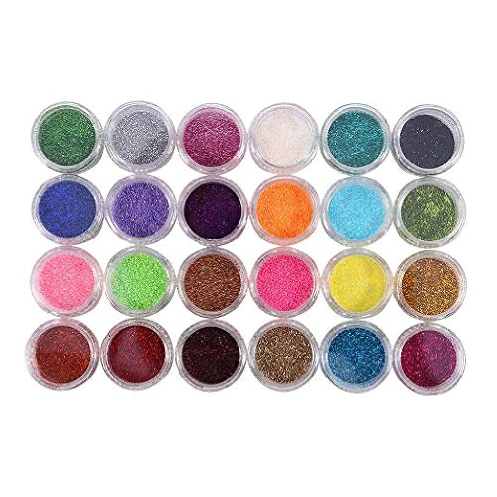 ペイン哀れな見かけ上24色キラキラパウダーネイルアートデコレーションキット