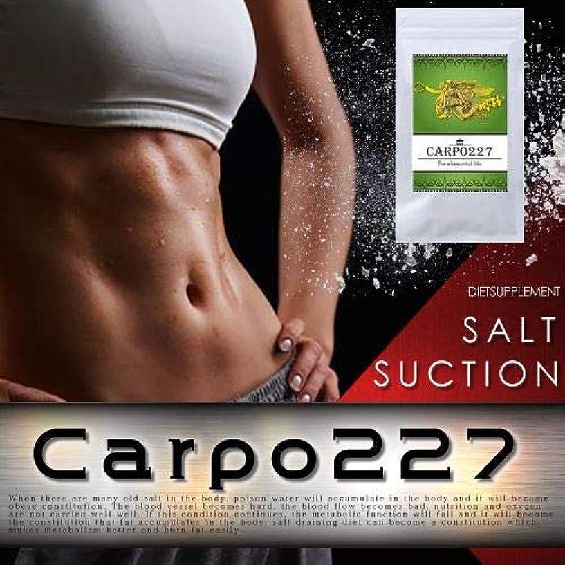 割り込み要旨肘Carpo227(カルポ227)