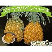 週末限定発送 沖縄産 スナックパイン(ボゴール種)2玉(1玉:約700g前後)