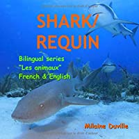 Shark/ Requin (Animaux)