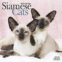 Siamese Cats Calendar 2019