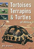 Tortoises, Terrapins & Turtles of Africa 画像
