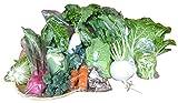 【旬の京野菜・だん弥】収穫したその日に出荷!おまかせAセット(農薬・化学肥料不使用)