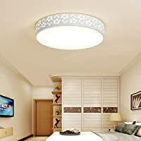 biutefangモダンアクリル雪LED天井ファッションリビングルームライトベッドルームライトLED天井ライト(ホワイト) 38cm 24W 38cm 24W 6999951996637