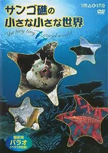 サンゴ礁の小さな小さな世界 [DVD]