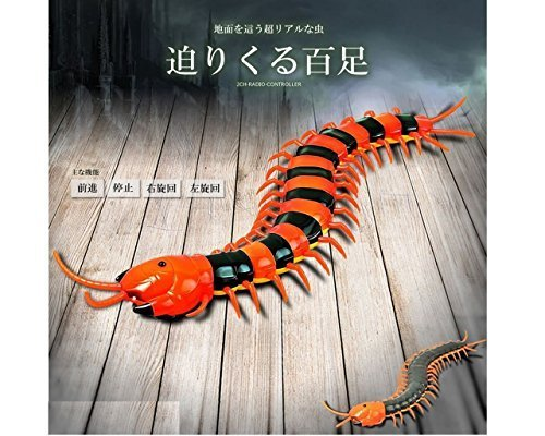 ドッキリ ムカデ ラジコン 2CH 【 カラーはランダム】