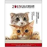 アクティブコーポレーション 2019年 猫 カレンダー 壁掛け 森田米雄 メッセージカレンダーCAT ACL-10 (2019年 1月始まり)