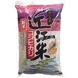 【精米】滋賀県産 白米 「近江米コシヒカリ」5kg 平成29年産