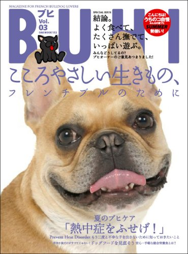 Buhi vol.03 (OAK MOOK 154)