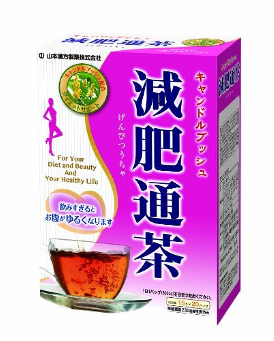 解釈的灰サンプル山本漢方製薬 減肥通茶 15gX20H
