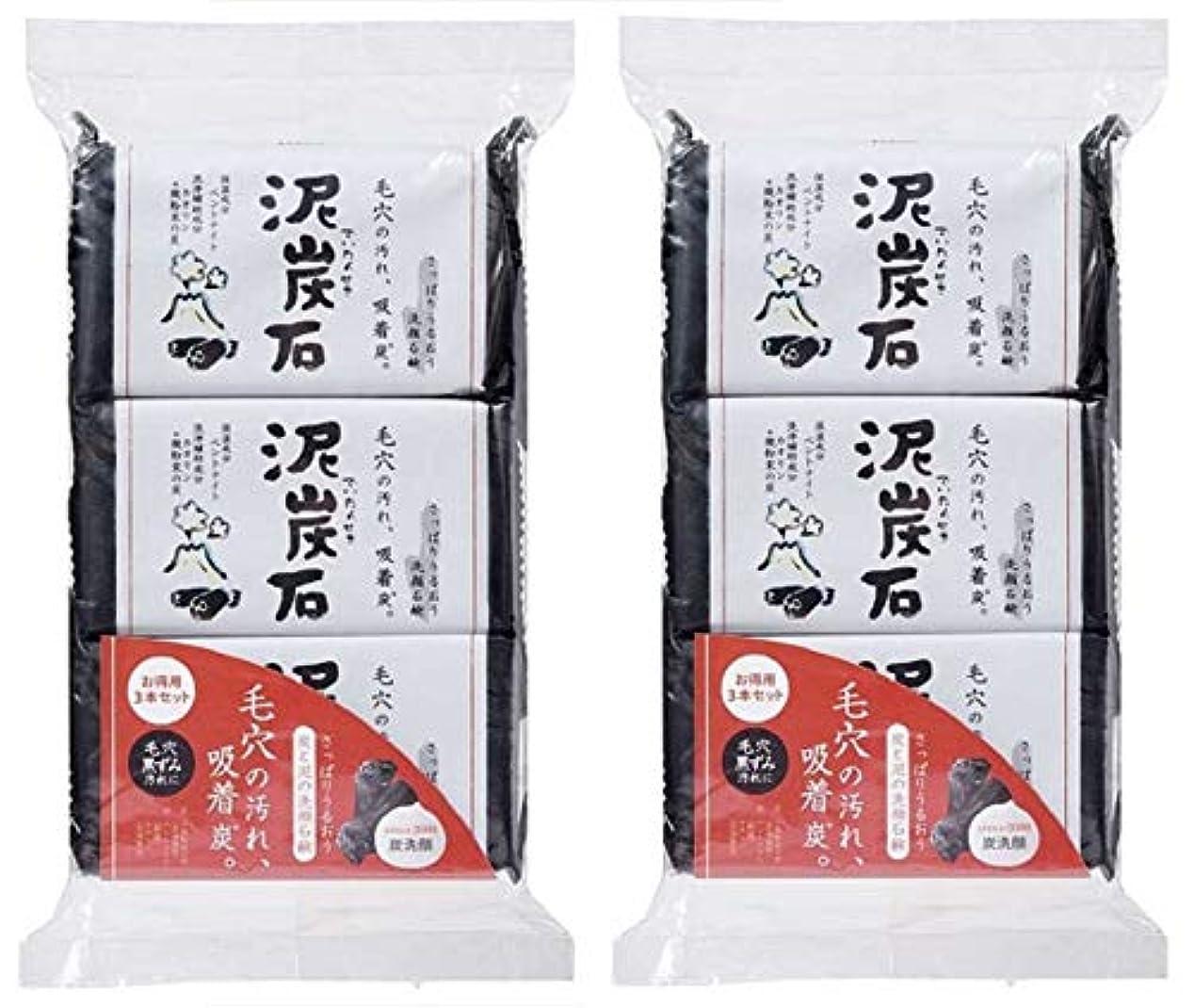 代替相互魅惑する(まとめ買い)ペリカン石鹸 泥炭石 110g×3個 ×2セット