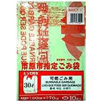 【 箱売り 商品】 市原市 指定 燃えるごみ用 30L とって付き 10枚入り×30冊セット IR-5