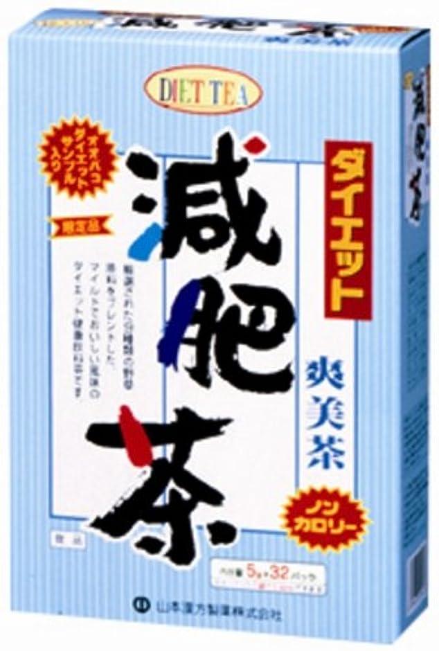 道徳地震ステープル山本漢方製薬 ダイエット減肥茶680 5gX32H