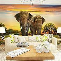 Ljjlm ネイチャー動物の壁紙紙象の写真の壁紙壁画3Dのリビングルームの寝室の家の装飾自己接着シルクの壁紙-200X140Cm